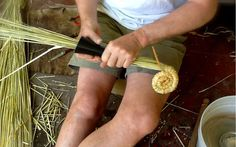 How to Build a Bee Skep - Modern Farmer (this is a pipe dream. do not attempt this at home)