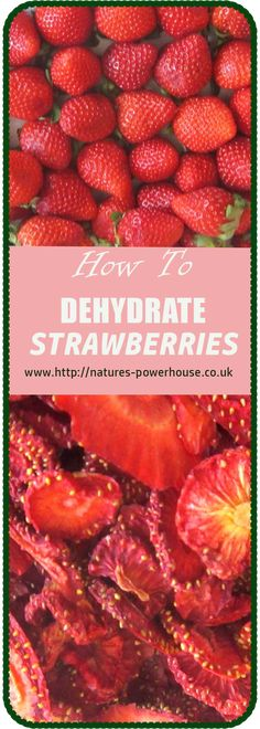 How to dehydrate strawberries, their uses and health benefits Dehydrated Strawberries, Health Benefits, Make It Simple, The Creator, Strawberry, Fresh, Easy, Food, Dried Strawberries