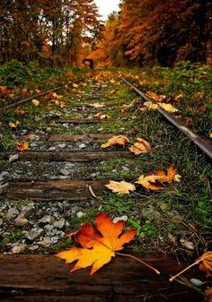 October by eleanor