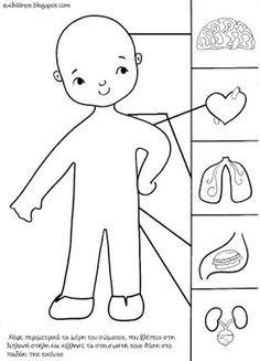 Artık Materyellerle Iç Organlarımız çalışmamız önce Okul öncesi