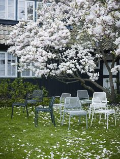 Mira is a modern and lightweight chair in powder coated steel. Mira Chair is available in three colours and comes with or without armrest.
