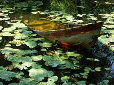 """is for ida who drowned in a lake i is for ida who drowned in a lake i is for ida who drowned in a lake """"Deux barques à la Roussille"""" Huile sur toile/ oil on canvas Canoe Frank """"LILY POND"""" Plantation Garden Theme Forest, Over The Garden Wall, Lily Pond, Nature Aesthetic, Belle Photo, Aesthetic Pictures, Beautiful Places, Scenery, Plants"""