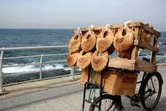 Hard shopping en bord de mer