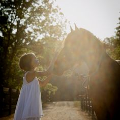 love this…brings me back to when it all started…simple times Horse Love, Horse Girl, The Horse Whisperer, Easy To Love, Heavenly, Cowboys, Equestrian, Wings, Horses