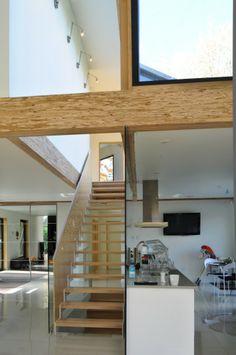 Crisan House / EST Architecture