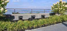 Sidewalk, Plants, Water Games, Side Walkway, Sidewalks, Planters, Pavement, Walkways, Plant