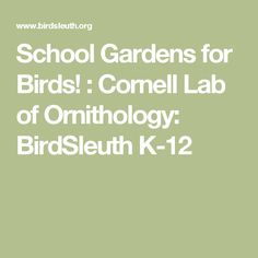 School Gardens for Birds! : Cornell Lab of Ornithology: BirdSleuth K-12