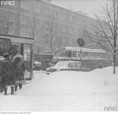 Przechodnie na przystanku autobusowym. Widoczne autobusy - jelcz PR110 oraz jelcz 043 linii 144 i taksówka fiat 125p, 1979 r.