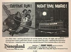 Disneyland Daytime Fun...Night Time Magic!