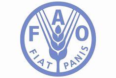 El Manejo Forestal Sostenible, Seguridad Alimentaria y Medios de Subsistencia