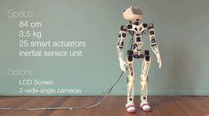 Poppy é um robô de código aberto que pode ser construído por qualquer pessoa com conhecimentos de eletrônica e com uma impressora 3D à disposição. O alvo do projeto são equipes de estudantes, coord...