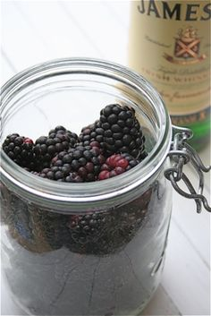 Blackberry Whiskey- this could be done with any fruit:alcohol.   I see a strawberry rum and blueberry vodka.