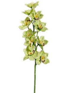 """FSO016-GR/BU ~~ 36"""" Cymbidium Orchid Spray Green Burgundy"""