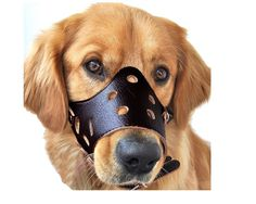 "Reopetâ""¢ Leather Dog Muzzle >>> Check out this great image  (This is an amazon affiliate link. I may earn commission from it)"