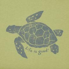 My sister knows just how to make me smile.) and positive messages. Children In Need, Kids, Turtle Love, Pets For Sale, Fall Pictures, Fall Pics, Tortoises, Positive Messages, Cool Logo