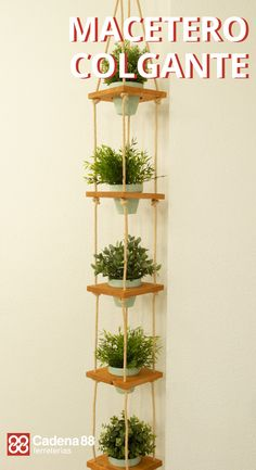 Diy Wall Decor, Diy Bedroom Decor, Diy Home Decor, Diy Hanging Shelves, Plant Shelves, House Plants Decor, Plant Decor, Recycled Garden, Diy Plant Stand