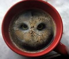 Funny pictures about Owl In Coffee. Oh, and cool pics about Owl In Coffee. Also, Owl In Coffee photos. Owl Coffee, I Love Coffee, Coffee Art, Coffee Cups, Black Coffee, Drink Coffee, Coffee Theme, Coffee Drawing, Coffee Milk