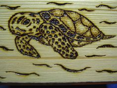 top of small wood box decorated with wood burning tool.  baby turtle.