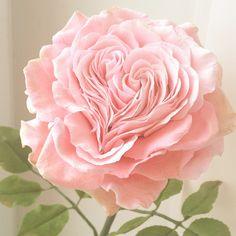 Купить Сердце из лепестков. Роза. Полимерная глина - бледно-розовый, розовый, сердце, любовь, романтика