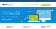 Risultati immagini per template internet marketing wordpress 2016