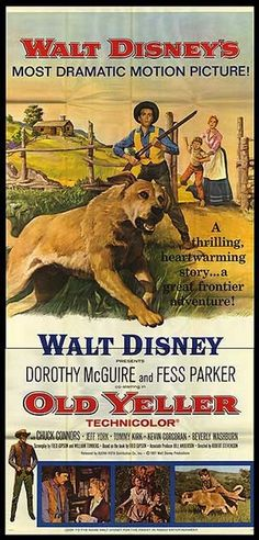 Old Yeller (1957) Dorothy McGuire, Fess Parker, Kevin Corcoran, Tommy Kirk, Spike
