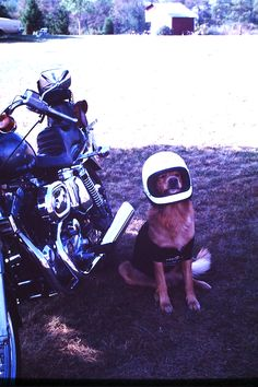 My son Ben, ready to ride his1977 Harley Sportster