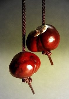 Conkers. Played this a lot as a child.