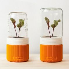 UAU project  GROWW.  the minimal greenhouse