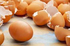 Поводы не выбрасывать яичную скорлупу и луковую шелуху | ДОСТОЙНАЯ ЖИЗНЬ НА ПЕНСИИ