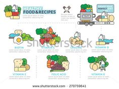 Set of Flat line icon & infographic design concept  / Healthy Food and Recipes / Vitamin and Minerals Infographic Element / icon /  - stock vector