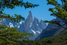 Patagonia's Cerro Torre seen through the trees Los Glaciares National Park Argentina [1000x667][OC] - see http://www.classybro.com/ for more!