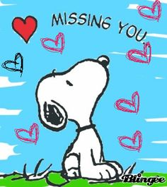 GIPHY is your top source for the best & newest GIFs & Animated Stickers online. Find everything from funny GIFs, reaction GIFs, unique GIFs and more. Snoopy Valentine's Day, Snoopy And Woodstock, Snoopy Quotes, Peanuts Quotes, Snoopy Pictures, Art Pictures, Miss You Babe, Peanuts Snoopy, Peanuts Cartoon