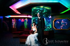 Newport Aquarium Cincinnati Penquin Wedding Google Search