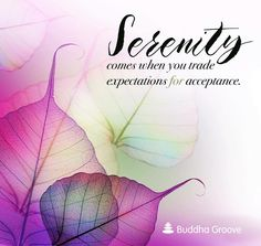Serenity ~ Peace ~ the flow that ~ Allows ~ without focusing ~ on the Result...  Lightbeingmessages.com