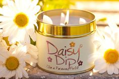 Spring is in the air with this beautiful Lily Flame scent Daisy Dip Scented Candles, Candle Jars, Candle Holders, Daisy Patches, Love Lily, Light My Fire, Luxury Candles, Beautiful Candles, So Creative