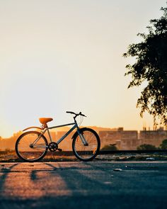 Pedal On With 10 Of The Most Beautiful Bike Rides In Sydney | Urban List Sydney Mountain Bike Shoes, Mountain Biking, Cool Bicycles, Cool Bikes, Bicycle Pictures, Fitness Tips For Men, Trek Bikes, Cycling Tips, Exercises