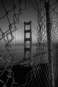 This photograph captures the importance of line in art. The use of the fence with the patterned thin lines helps to accentuate the strong vertical lines of the bridge. The photograph makes your eyes move right to the intended focus and gives a sense of hopefulness. | best stuff
