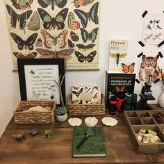 We revamped our nature table this week hoping it will inspire us to do more nature studies. Back Porch Makeover, Kallax Shelving Unit, Montessori, Imagination Tree, Card Book, Nature Table, Roomspiration, Vintage Room, Nature Journal