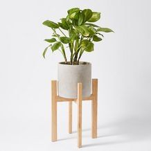 Concrete Pot With Wooden Stand – Target Australia Concrete Furniture, Concrete Pots, Concrete Garden, Target Bedding Girls, Home Decor Australia, Laundry Decor, Rustic Home Design, Grunge Room, Target Home Decor