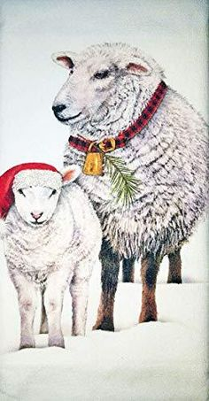 EWE SHEEP COTTON DOUBLE OVEN GLOVES 3 PACK TEA TOWEL SET