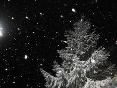 RE: 24.01.2013 - Aktuelle Wettermeldungen - 2