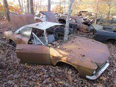 junkyard for cars - Google Search