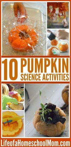 10 Pumpkin Science Projects- perfect ideas for pumpkin day! Fall Preschool, Kindergarten Science, Teaching Science, Science For Kids, Science Fun, Science Ideas, Science Education, Summer Science, Science Chemistry