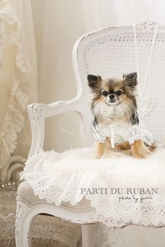 Chi-i Pure Dream Parti du Ruban Photo -6ページ目
