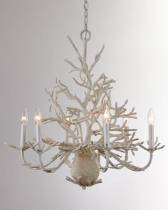 /\ /\ . Coral Chandelier