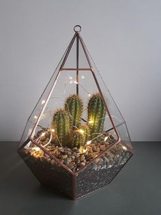 How to Make a Succulent Terrarium (With Pictures) Cute Bedroom Decor, Bedroom Decor For Teen Girls, Small Room Bedroom, Terrarium Plants, Succulent Terrarium, Terrarium Ideas, Vertical Garden Plants, Succulent Wall Art, Home Design Decor