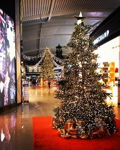 The airport's looking magical and Christmassy!  #christmas #magical #tistheseason #sillyseason #christmastree #christmasstar #digitalnomad #laptoplifestyle #wanderlust #freedom #freedomlifestyle #freedompreneur #invigoratedliving