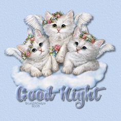 Good Night Angel Kittens Photo: This Photo was uploaded by barbalou. Find other Good Night Angel Kittens pictures and photos or upload your own with Pho. Thursday Greetings, Good Night Greetings, Good Night Wishes, Good Night Sweet Dreams, Good Night Quotes, Happy Thursday, Ramadan Greetings, Thursday Quotes, Diwali Greetings