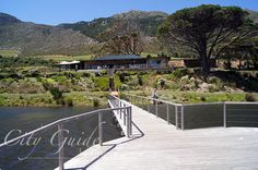 Cape Point Vineyards, Cape Peninsula - CityGuideLounge Cape Town, Vineyard, Vine Yard, Vineyard Vines
