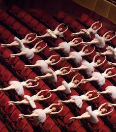 group choreography 7 gorgeous dancer photos: The New York City Ballet City Ballet, Paris Opera Ballet, Dance Quotes, Ballet Photography, Ballet Beautiful, Pointe Shoes, Ballet Dancers, Ballerinas, Lets Dance